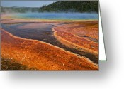 Geothermal Greeting Cards - Middle hot springs Yellowstone Greeting Card by Garry Gay