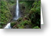 Tropical Island Photo Greeting Cards - Middleham Waterfall in Dominica Greeting Card by Tropical Ties Dominica