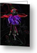 Fuchsia Greeting Cards - Midnight Bloom Greeting Card by Torie Tiffany