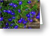 Tiny Flowers Greeting Cards - Midnight Blue Greeting Card by Kaye Menner