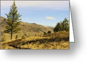 Greaves Greeting Cards - Midways Mountain Trails Greeting Card by John  Greaves