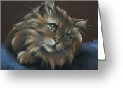 Animal Portrait Pastels Greeting Cards - Miko Greeting Card by Cynthia House