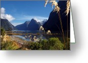 Pflanzen Greeting Cards - Milford Sound Greeting Card by Mario Hallbauer