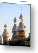 College Campus Greeting Cards - Minarets over Tampa Greeting Card by David Lee Thompson