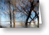 Fall Photographs Greeting Cards - Mind of Descartes  Greeting Card by Steven Milner