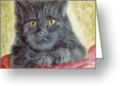 Remy Francis Greeting Cards - Mini Kitty Portrait Greeting Card by Remy Francis