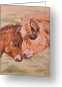 Shores Painting Greeting Cards - Miniature Ponies Mare and Foal Greeting Card by Abbie Shores