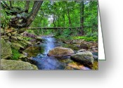 Commission Photo Greeting Cards - Minnewaska State Park Greeting Card by David Hahn