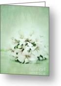 Stillife Greeting Cards - Mint Green Greeting Card by Priska Wettstein