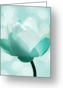 Lotus Greeting Cards - Mint Greeting Card by Photodream Art