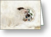 Playful Kitten Greeting Cards - Mirror...Mirror... Greeting Card by Datha Thompson
