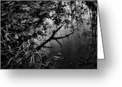 Photographer Photographs Photographs Greeting Cards - Mirrors Trail Greeting Card by Jerry Cordeiro