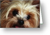 Terrier Greeting Cards - Mischief Greeting Card by Patti Siehien