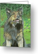 Dogs Pastels Greeting Cards - Mishka Greeting Card by Marion Derrett