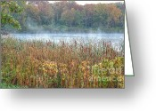 Turning Leaves Greeting Cards - Misty Autumn Morning Greeting Card by Deborah Smolinske