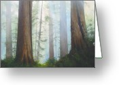 Oldgrowth Greeting Cards - Misty Blue Greeting Card by J M Brodrick