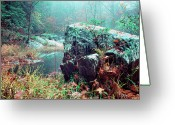 Stafford Greeting Cards - Misty Chopawamsic Creek Autumn Day Greeting Card by Thomas R Fletcher