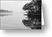 Think Greeting Cards - Misty Cove Greeting Card by Luke Moore