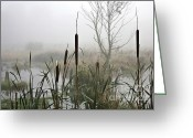 Brake Greeting Cards - Misty day Greeting Card by Heiko Koehrer-Wagner