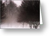 Bare Trees Greeting Cards - Misty Greeting Card by Linda Knorr Shafer