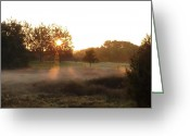 Misty Prints Prints Greeting Cards - Misty Morning Greeting Card by Amy Clarke