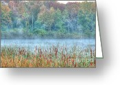 Turning Leaves Greeting Cards - Misty Morning Greeting Card by Deborah Smolinske