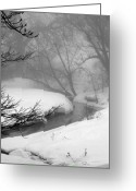 Winter Trees Photo Greeting Cards - Misty Morning Greeting Card by Julie Lueders