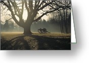 Cannons Greeting Cards - Misty View Of Canon And Tree Greeting Card by Sam Abell