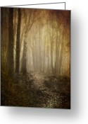 Trunk Greeting Cards - Misty Woodland Path Greeting Card by Meirion Matthias