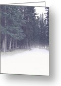 Autumn Photographs Greeting Cards - Misty Woods Greeting Card by Andrea Hazel Ihlefeld