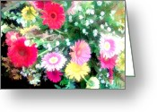 Aster  Painting Greeting Cards - Mixed Asters Greeting Card by Elaine Plesser