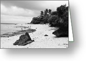 Cebucity Greeting Cards - Moalboal Cebu White Sand Beach in Black and White Greeting Card by James Bo Insogna