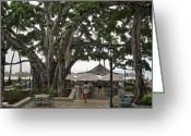 Waikiki Beach Greeting Cards - Moana Surfrider Banyan Court - Waikiki Beach Greeting Card by Daniel Hagerman