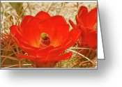 Cactus Flower Digital Art Greeting Cards - Mojave Mound Cactus Poster - California Series Greeting Card by Ben and Raisa Gertsberg