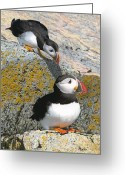 Atlantic Drawings Greeting Cards - Mom Watch ME Greeting Card by Brent Ander