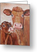 Charolais Greeting Cards - Mommas Boy Greeting Card by Laura Carey