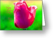 Tulips Pastels Greeting Cards - Moms Tulip Greeting Card by Kim