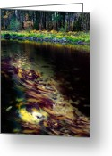 Merced County Greeting Cards - Monet Currents Greeting Card by Edward Mendes