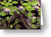 Lilly Pads Photo Greeting Cards - Monets Lillies Greeting Card by Karen Lewis