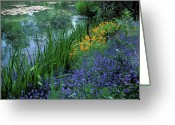 Featured Artwork Prints Greeting Cards - Monets Lily Pond Greeting Card by Kathy Yates