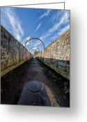 Colour Image Greeting Cards - Monkey Bridge Greeting Card by John Farnan
