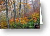 Williams Greeting Cards - Monongahela National Forest Autumn Greeting Card by Thomas R Fletcher