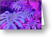 Purples Digital Art Greeting Cards - Monstera Leaves - in violets Greeting Card by Kerri Ligatich