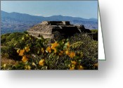 Historical Site Greeting Cards - Monte Alban 4 Greeting Card by Michael Peychich