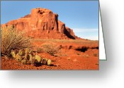 Barren Greeting Cards - Monument Valley Cactus Greeting Card by Jane Rix