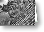 Sand Fences Photo Greeting Cards - Moods BW Greeting Card by JC Findley