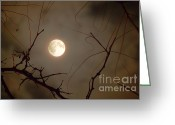 Suburbs Greeting Cards - Moon Behind Branches Greeting Card by Deborah Smolinske