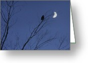 Lunar Greeting Cards - Moon Crow Greeting Card by Gothicolors With Crows