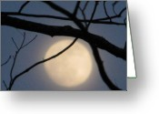 Blue Moon Greeting Cards - Moon Glow Greeting Card by Lindie Racz