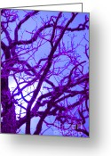 Supernatural Mixed Media Greeting Cards - Moon Tree purple Greeting Card by First Star Art